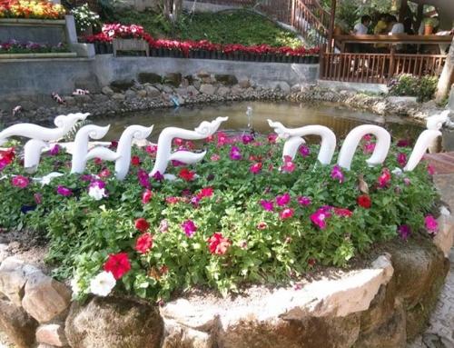 พาเที่ยว The Doi Resort