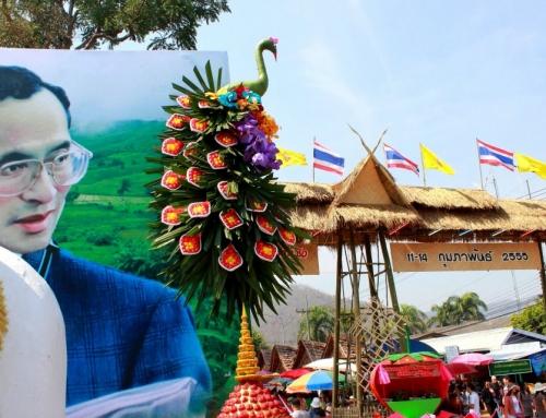 ชวนเที่ยวงานเทศกาลสตรอเบอร์รี ของดีอำเภอสะเมิง ครั้งที่ 16 ประจำปี 2560