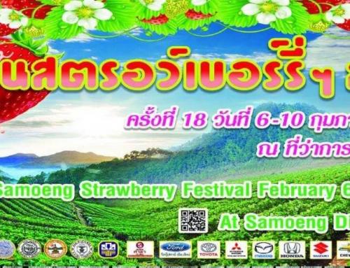 ชวนเที่ยวงานเทศกาลสตรอเบอร์รี ของดีอำเภอสะเมิง ครั้งที่ 18 ประจำปี 2562